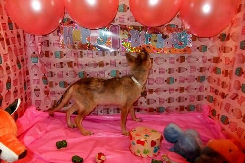Valla's 1st birthday
