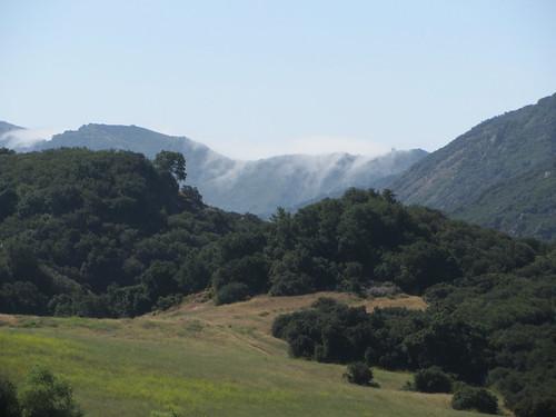 mist creeps over the mountain