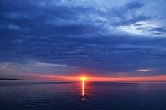 [Free Images] Nature, Sunrise / Sunset, Clouds, Horizon / Skyline, Landscape - Canada ID:201206020600
