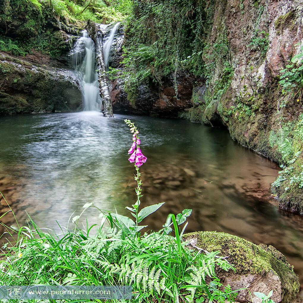 Cascadas del río Pisueña - Cantabria