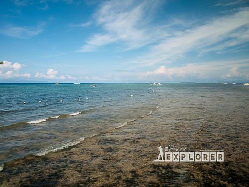 Rediscovering Alona Beach