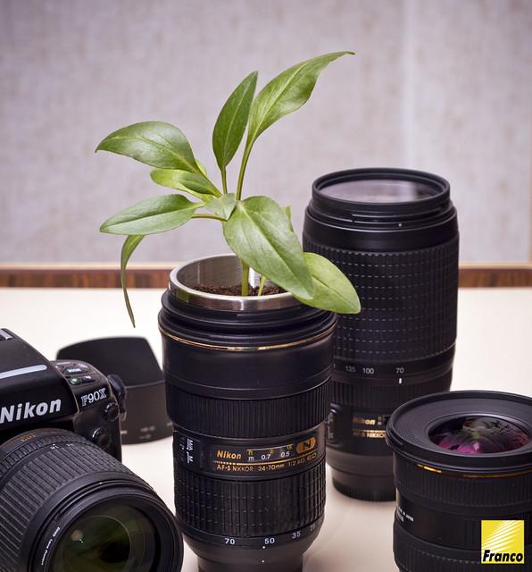 I love Nikon?