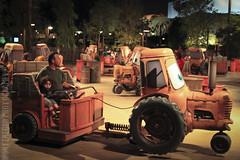 Disney Theme Park Pictures