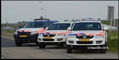 Dutch Amarok and Touaregs.