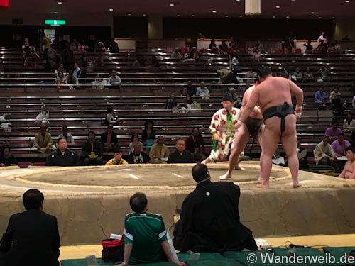 sumo (27 von 53)