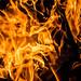 Fire by -gregg-