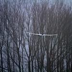 za, 01/01/2011 - 16:04 - 7D-20110101-160407a