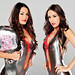 bella twins-wwe female wrestling-women championship