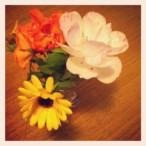 Doorbell rings. Neighbours kid bringing us  some flowers. I love my neighbourhood.