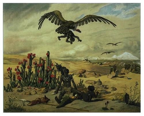 013-El Ganimides de los tropicos-Afrika  Studien und Einfaelle eines Malers 1895- Hans Richard von Volkmann- Universitätsbibliotheken Oldenburg