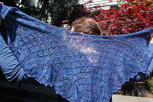 Orchid Theif Shawlette