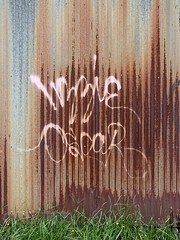 penlands graffiti wizzie oscar