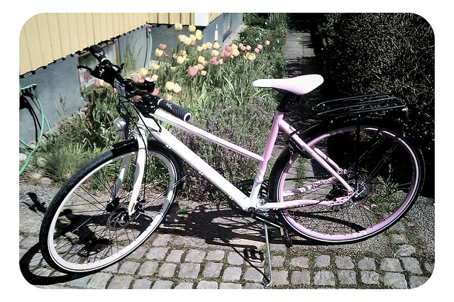 Jag cyklar fram på rosa moln