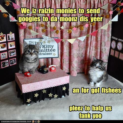 lol raisin-monies kittehs