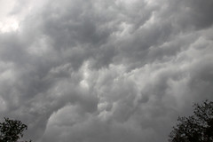 thunderstorm(0.0), storm(1.0), cumulus(1.0), cloud(1.0), daytime(1.0), black-and-white(1.0), sky(1.0),