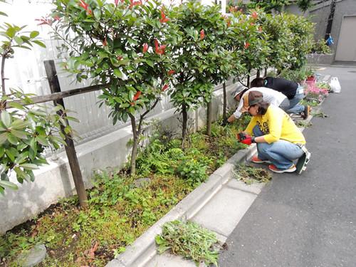 2012-6-2ビオトープガーデン実習-6