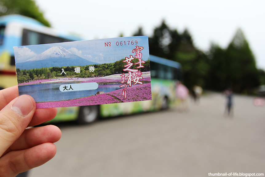 Fuji Shibazakura Tour