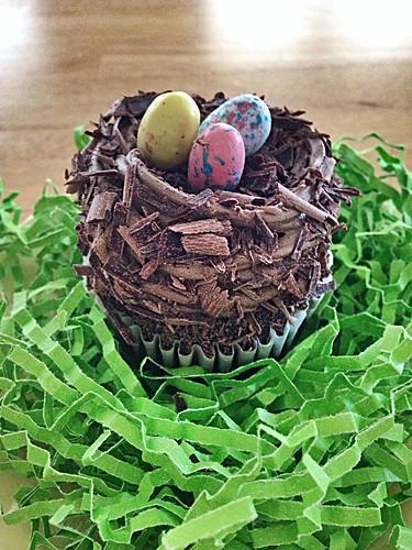 Bird's Nest Cupcake