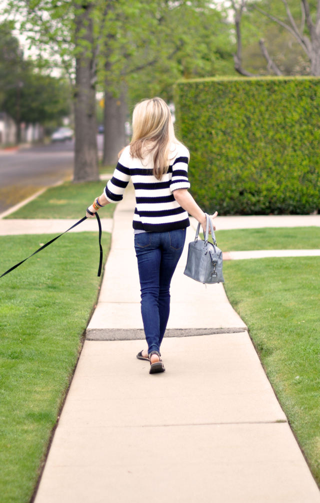 striped sweater-skinny jeans-waling the dog