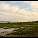 Green banks of the Irrawaddy River  -Kachin State, Myanmar