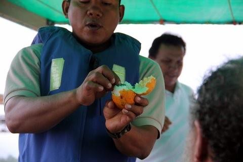 ecuador-amazon-photos