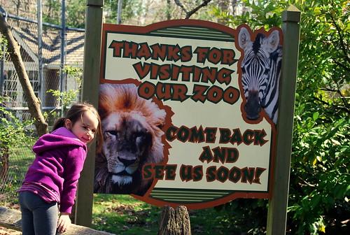zoo - goodbye