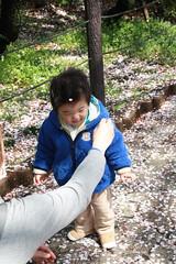 西郷山公園のとらちゃん(2012/4/15)