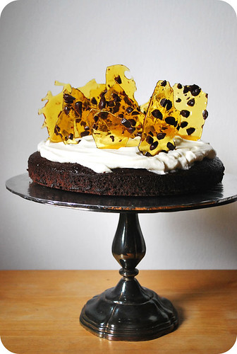 Mocha Cake with Chocolate-Coated Coffee Beans Brittle
