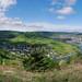Moselle river for bons vivants