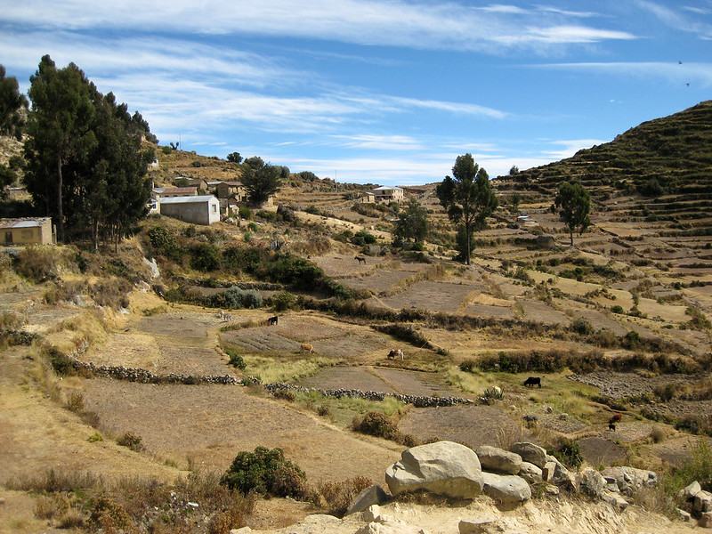 Farm terraces on Isla Del Sol - Lake Titicaca - Bolivia