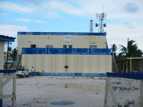 Water plant on Caye Caulker
