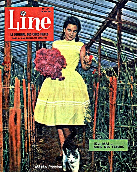 oeillets sous serre en fleur début mai 1960 météopassion