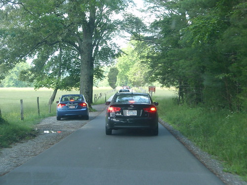 driving in cade's cove
