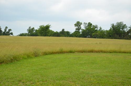field mo missouri fields ozarks historicsite ashgrove statehistoricsite nathanboone