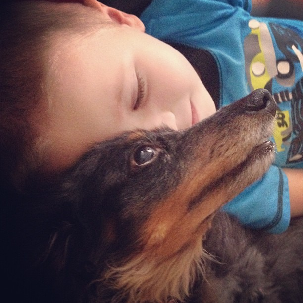 A boy and his #dog