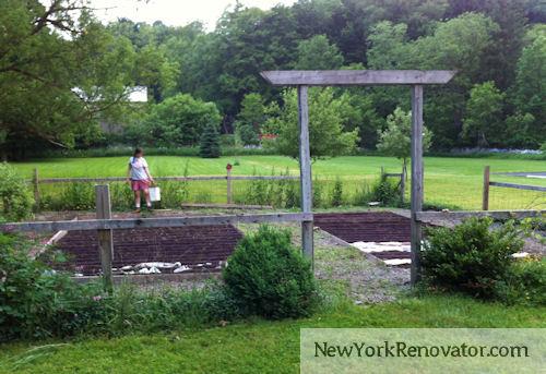 Garden1.2012