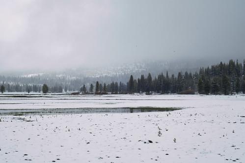 Tuolumne Meadows