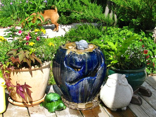 the new water feature garden pots