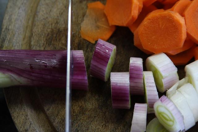 Cebolla de Verdeo y Zanahoria