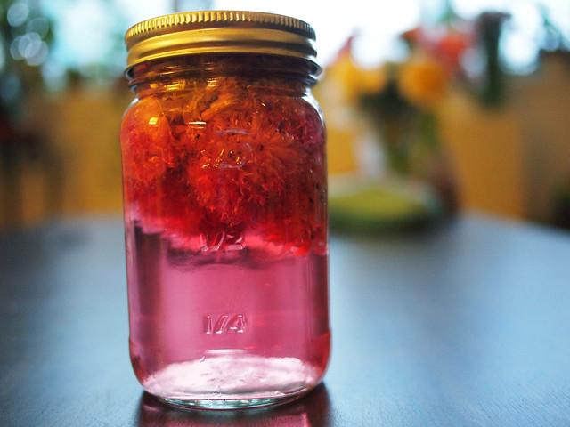 Chives Blossom Vinegar