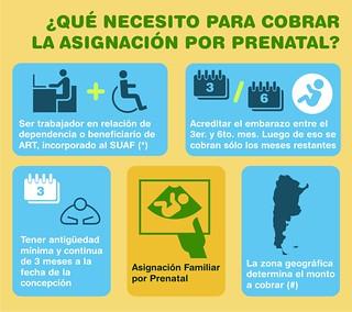 ¿Qué necesito para cobrar la asignación por prenatal?