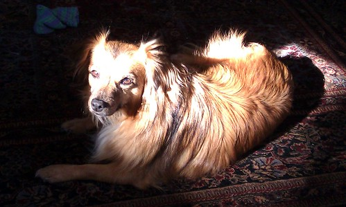 Solstice in a Sunbeam