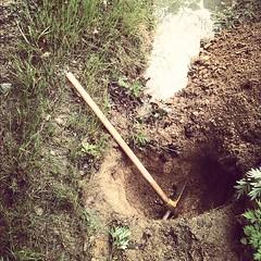 掘り掘り。