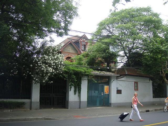 13 前面是洋人后面是洋房的上海