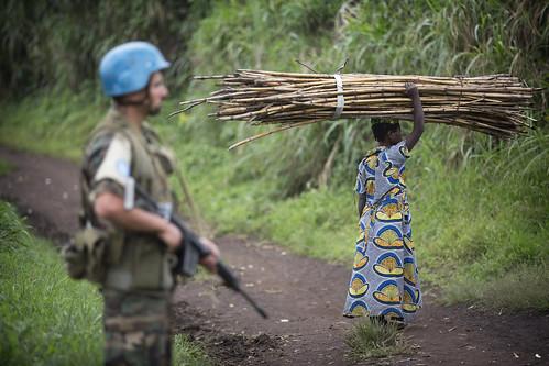 犯罪組織靠走私自然資源謀利。(來源:聯合國 United Nations Photo)
