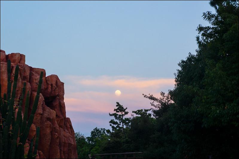 20082013Tokyo Disneyland-49