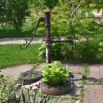 Ein ehemaliger Trinkwasserbrunnen als Dekoration in der Altgasse. Trotz Satire im Fernsehen (heimathaus-billed.de/mediengalerie/videos/47-navetistu), sind abgefahrene Autoreifen als Blumenkübel unverdrossen beliebt. Foto: Werner Gilde