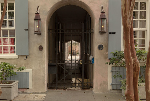 city windows urban dog house beautiful canon fence view courtyard charleston oldhouse shutters friday stucco sidelamps outstandingromanianphotographers