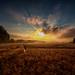 lights at the horizon by radonracer