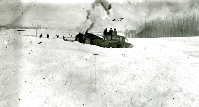 P-2446